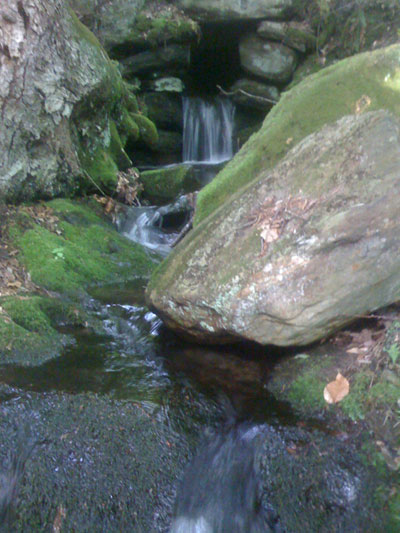 Little River Hike Picture 3